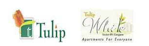 Tulip White Floor Plan
